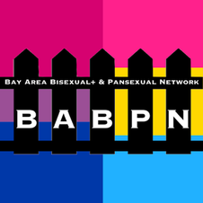 BAY AREA BI+ & PAN NETWORK